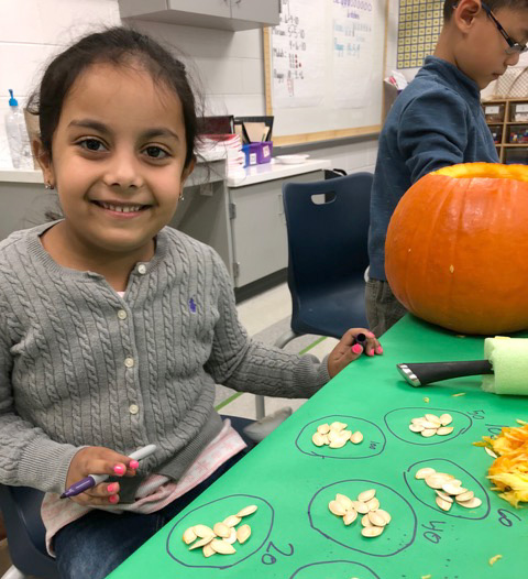 student doing pumpkin math