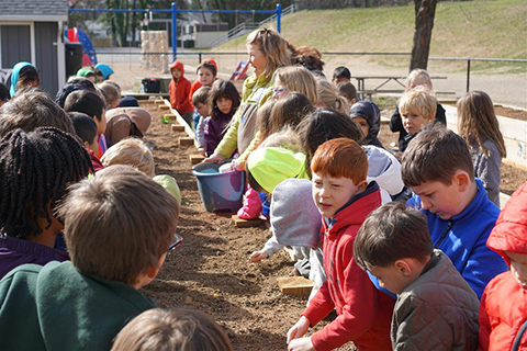 students planting vegetable seeds