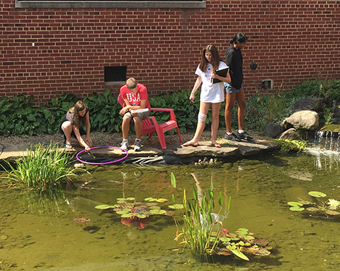 students at the courtyard pond