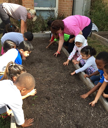 students and teachers working in flower bed