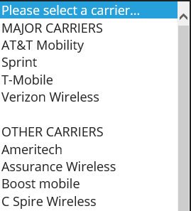 Screenshot of the list of cell phone providers on a computer.