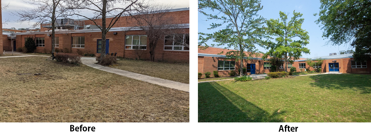 Pictures showing how the courtyard looked before and after the students set to work.