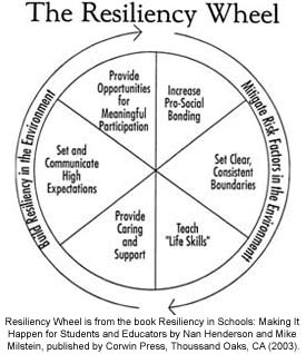 Resiliency Wheel identifying six resiliency builders
